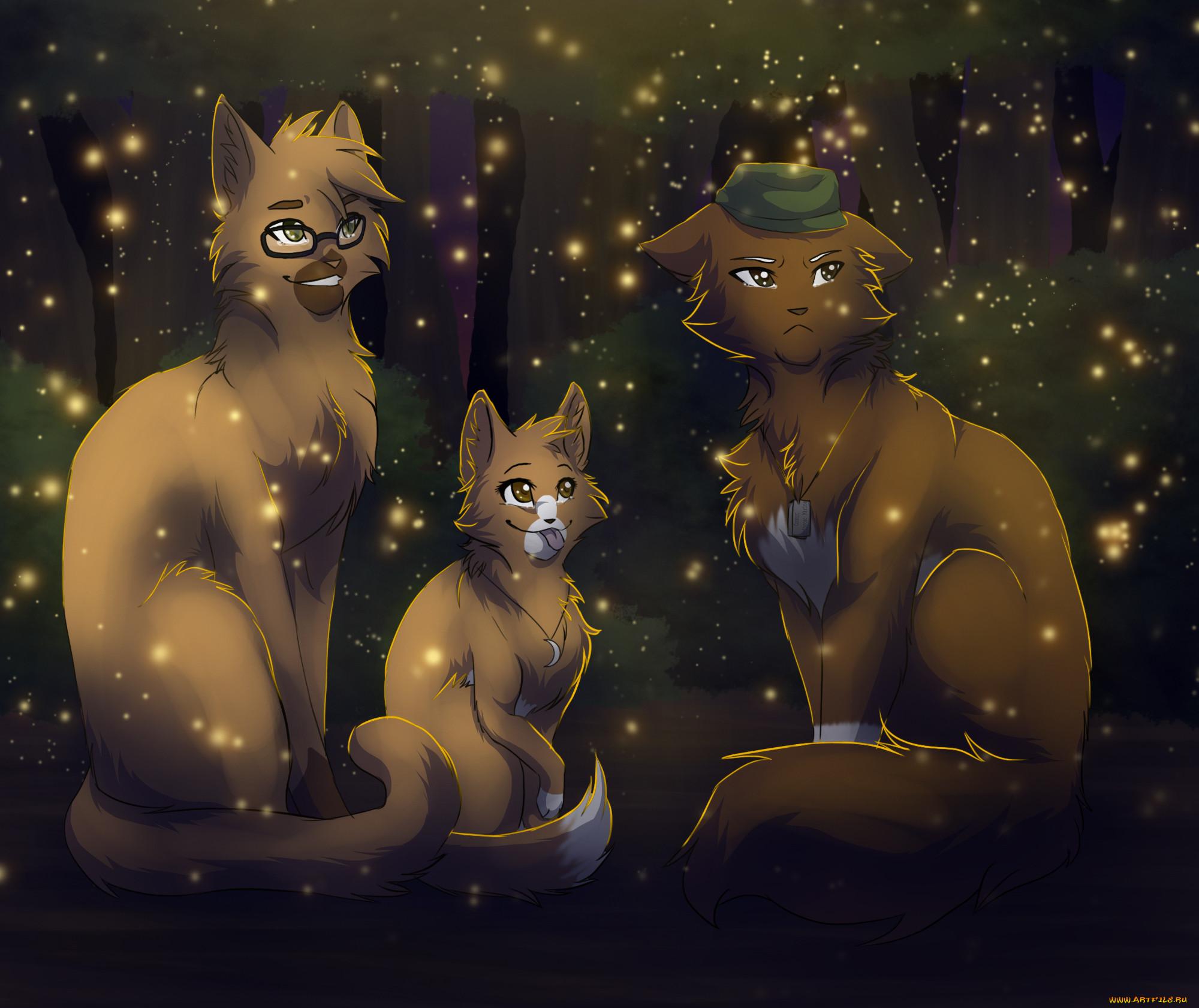 рисованные, животные,  коты, коты
